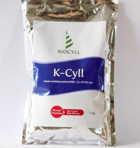 Kcyll 1
