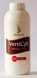 Verticyll 1