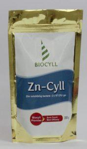 Zncyll 1